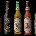 Have You Tried Yuengling Beer Yet?  Why The Hell Not?